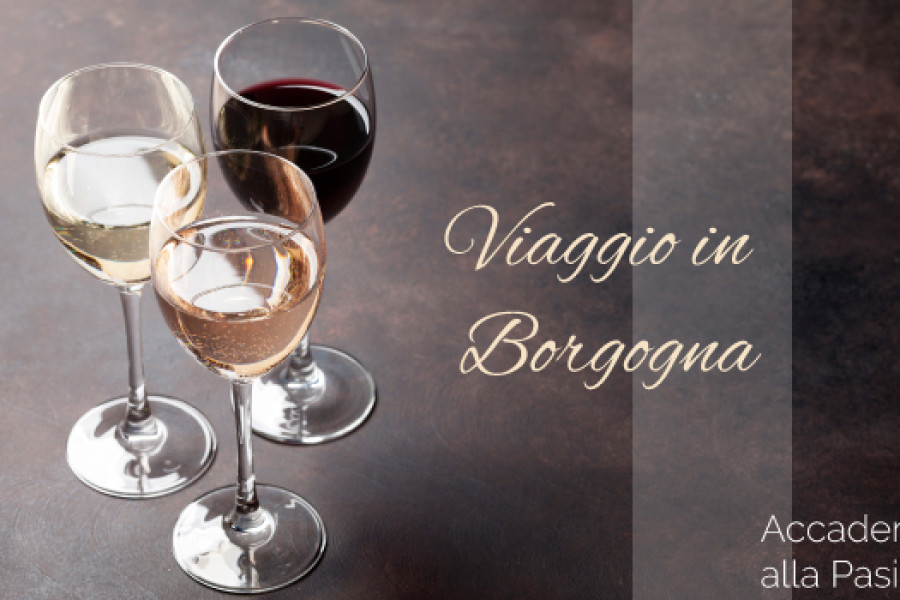 Viaggio in Borgogna in 4 lezioni